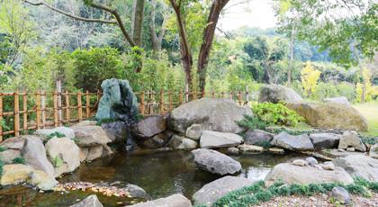 庭に流れる小川
